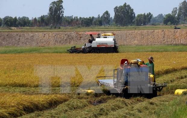 Tailandia cuenta con suficiente recursos hidricos para enfrentar sequia hinh anh 1