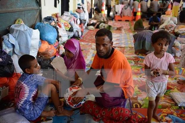 Efectua conferencia sobre etnia Rohingya en Malasia hinh anh 1