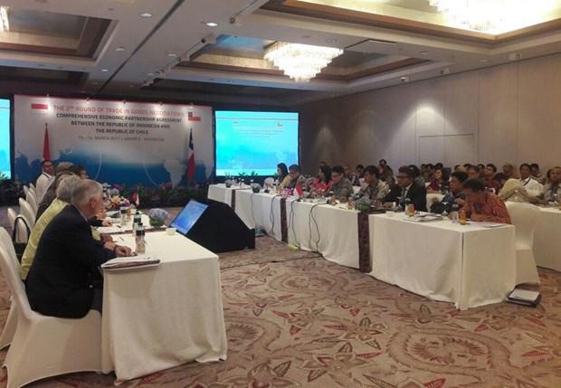 Indonesia y Chile por finalizar en 2017 negociaciones de CEPA hinh anh 1