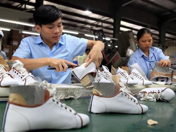 Urgen a aumentar suministro nacional de materias primas para sector de calzado hinh anh 1