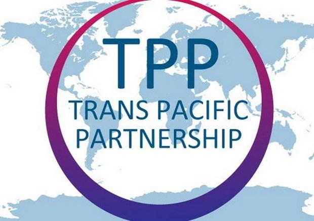 El futuro del TPP se decidira en Vietnam hinh anh 1