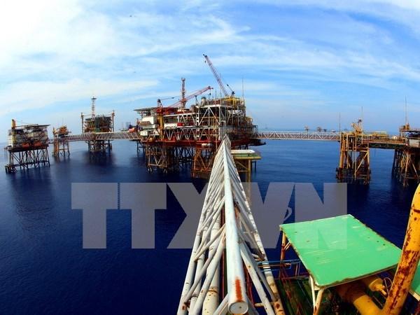 Vietnam y Rusia buscan mayor cooperacion en el sector petrolero hinh anh 1