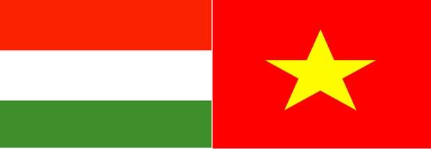 Conmemoran Dia Nacional de Hungria en Ciudad Ho Chi Minh hinh anh 1
