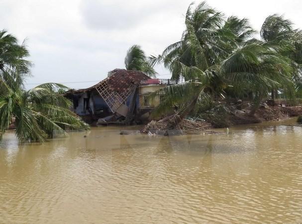 Vietnam mejora capacidad de respuesta ante riesgos naturales hinh anh 1