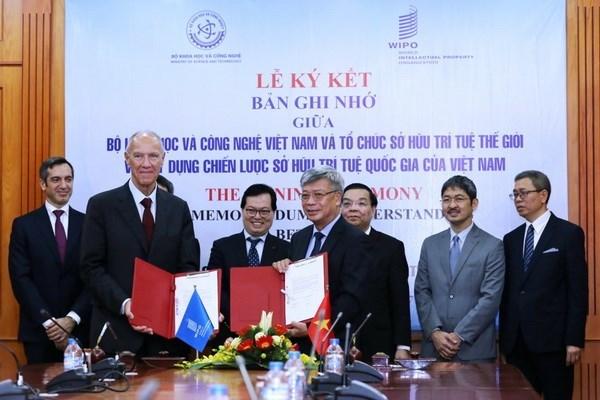 OMPI respalda a Vietnam en diseno de estrategia nacional de propiedad intelectual hinh anh 1