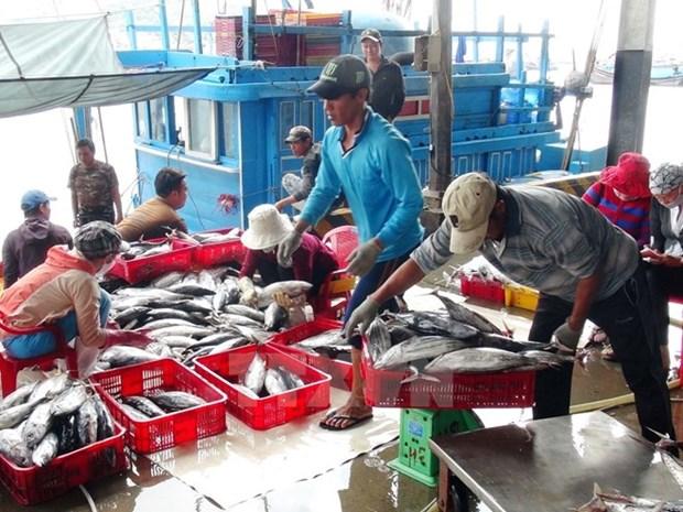 Vietnam continua proceso de compensacion a afectados por incidente ambiental hinh anh 1