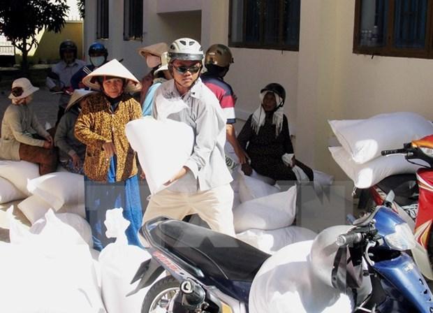 Otorgan arroz a alumnos pobres en zonas con dificultades de Dak Nong hinh anh 1