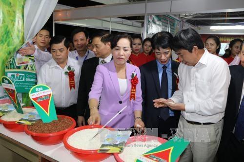 Nutrida participacion en Feria Comercial de Delta de Rio Rojo – Ninh Binh hinh anh 1