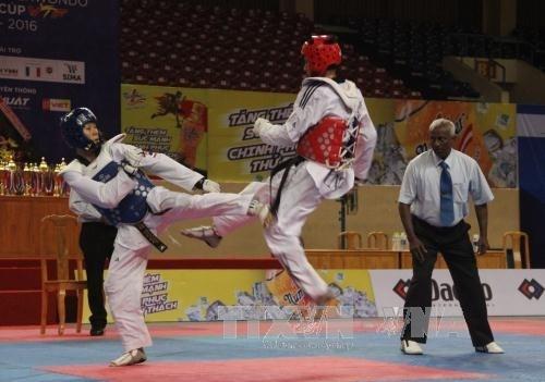 Taekwondista vietnamita gana medalla de oro en cita regional hinh anh 1