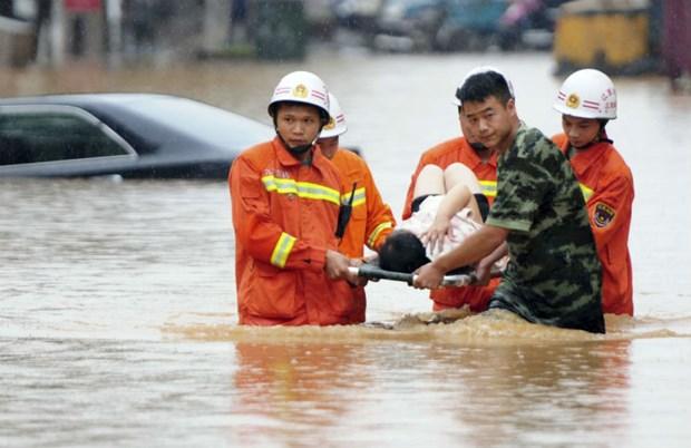Al menos cinco muertos por inundaciones en Indonesia hinh anh 1