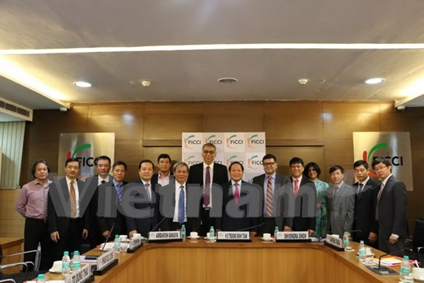 India apoyara a Vietnam en desarrollo de tecnologia informatica hinh anh 1