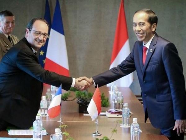 Francia e Indonesia robustecen cooperacion en defensa hinh anh 1