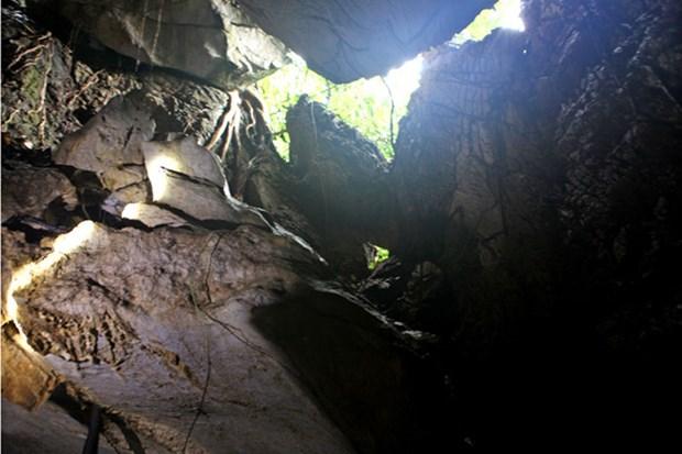 Descubren complejo de tumbas de Edad de Hierro en provincia vietnamita hinh anh 1
