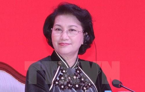Presidenta parlamentaria de Vietnam visitara Suecia, Hungria y Republica Checa hinh anh 1