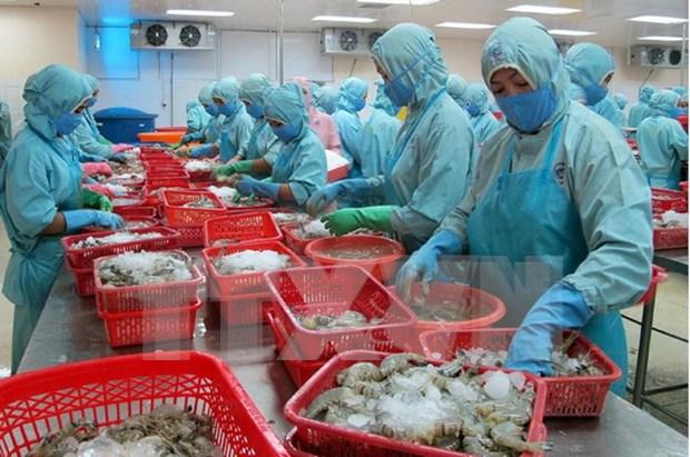 Exportaciones de productos acuaticos de Vietnam alcanzan mil 500 millones de dolares hinh anh 1