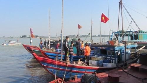 Provincia de Thanh Hoa adopta medidas para impulsar el sector pecuario hinh anh 1