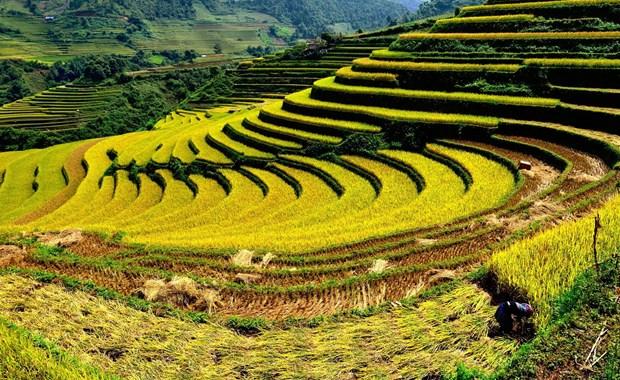 Promueven turismo en la region del Noroeste de Vietnam hinh anh 1