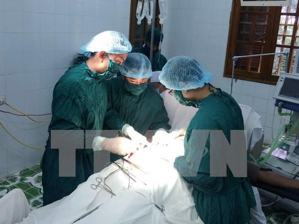 Vietnam y Alemania cooperan en formacion de medicos hinh anh 1