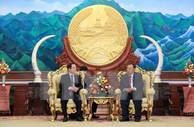 Presidente de Laos recibe a delegacion de Vietnam hinh anh 1