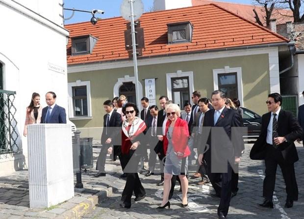 Presidenta del Parlamento vietnamita visita ciudad hungara de Szentendra hinh anh 1