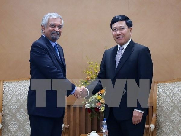 Vicepremier vietnamita recibe a nuevo coordinador de PNUD hinh anh 1