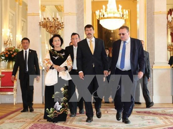 Vietnam aprecia politica de Hungria de impulsar nexos economicos bilaterales hinh anh 1