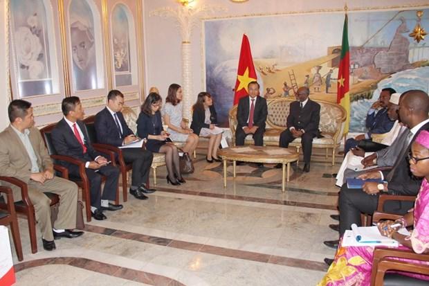 Vietnam y Camerun preparan actividades para aniversario de sus relaciones hinh anh 1
