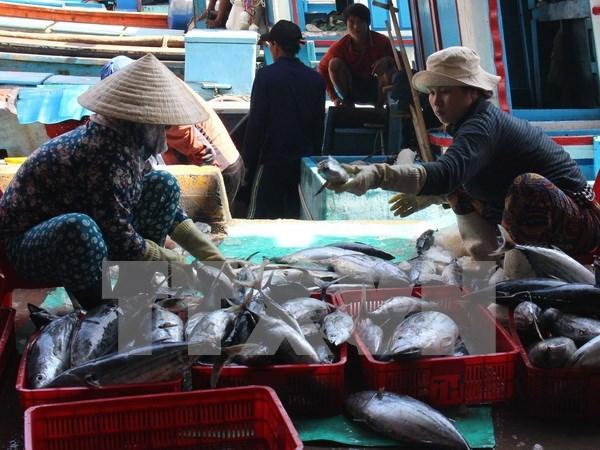 Mercado de productos acuaticos en Centro de Vietnam se recupera de incidente ambiental hinh anh 1