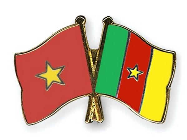 Vietnam y Camerun fortalecen nexos comerciales e inversionistas hinh anh 1