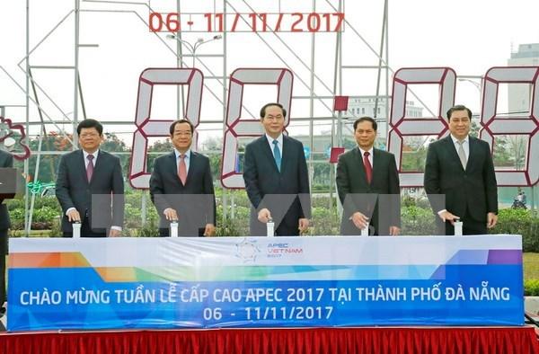 Presidente vietnamita inspecciona preparativos de Cumbre de APEC hinh anh 1
