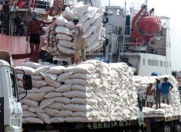 Exportaciones camboyanas de arroz a China crecieron 82% en primer trimestre de 2017 hinh anh 1