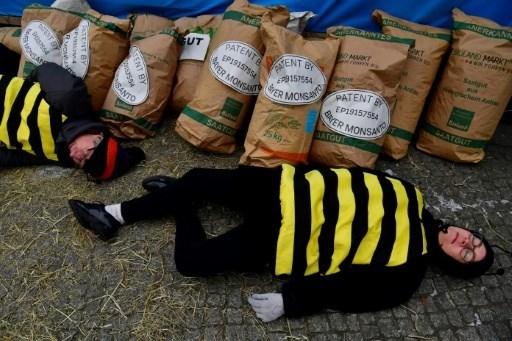Un tribunal en La Haya responsabiliza a Monsanto de ecocidio hinh anh 1