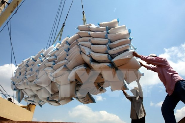 Disminuyen exportaciones vietnamitas de arroz en primer trimestre de 2017 hinh anh 1