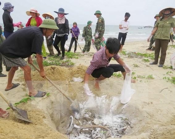 Exigen transparencia de compensacion a personas afectadas por incidente ambiental en Vietnam hinh anh 1