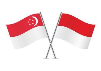 Singapur e Indonesia impulsan cooperacion economica hinh anh 1