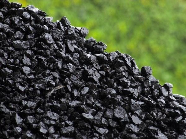 Vietnam y Japon cooperan en el desarrollo de produccion de carbon limpio hinh anh 1