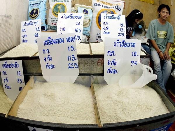 En alza exportaciones arroceras de Tailandia hinh anh 1