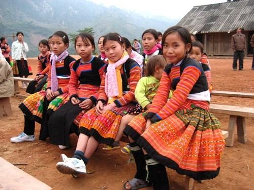 Debaten en Vietnam medidas para impulsar el desarrollo de minorias etnicas hinh anh 1