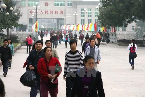 Vietnam fortalece control de servicios turisticos de bajo costo hinh anh 1