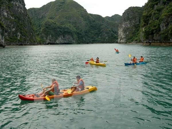 Reanudan servicios de kayak en Bahia vietnamita de Ha Long hinh anh 1