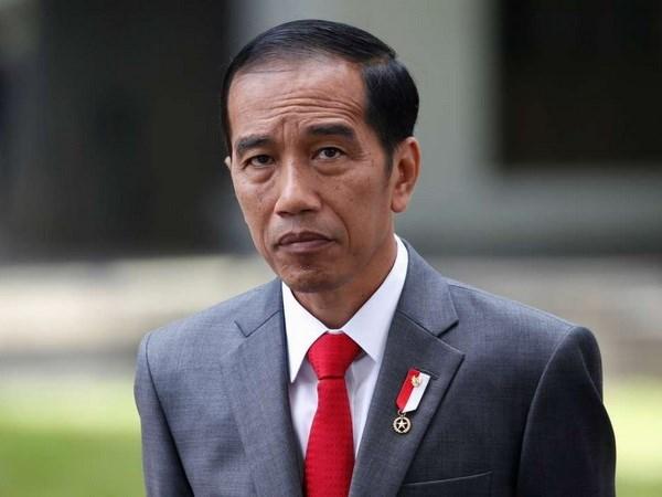 Indonesia fortalece cooperacion economica con Hong Kong hinh anh 1