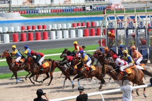 Inauguran mayor hipodromo en Vietnam hinh anh 1