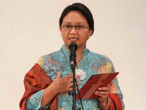 Indonesia pide a ASEAN luchar contra campana sobre aceite de palma hinh anh 1