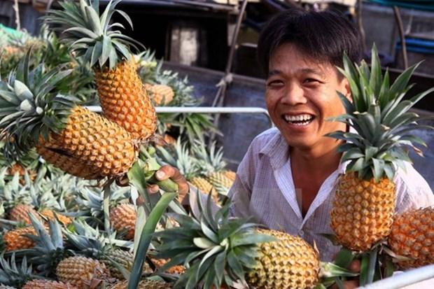 Vietnam ingresa mil millones de dolares por exportaciones hortofruticolas hinh anh 1