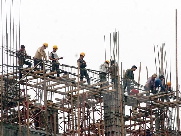 Comparten en Vietnam experiencias sobre implementacion de seguridad laboral hinh anh 1