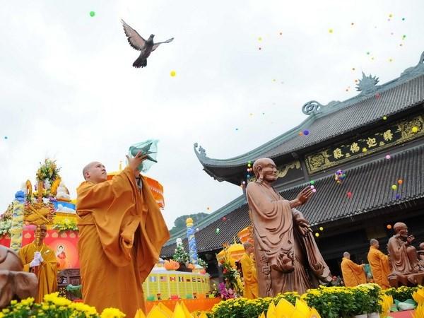 Ninh Binh conmemora el Dia de Vesak 2017 hinh anh 1