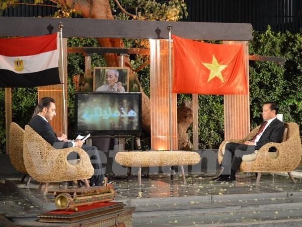 Television egipcia transmite en vivo programa sobre Vietnam hinh anh 1
