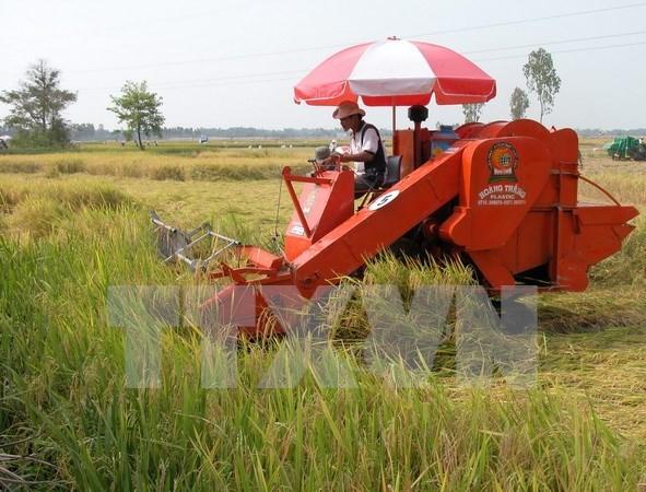 IFC respalda a Vietnam en desarrollo sostenible de agricultura hinh anh 1