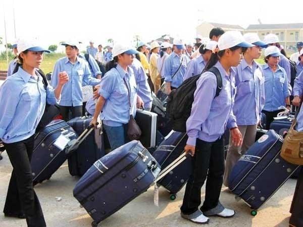 Mas de 100 mil pobres vietnamitas ayudados para trabajar en extranjero hinh anh 1