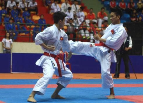 Karatecas vietnamitas ganan 22 medallas de oro en campeonato regional hinh anh 1